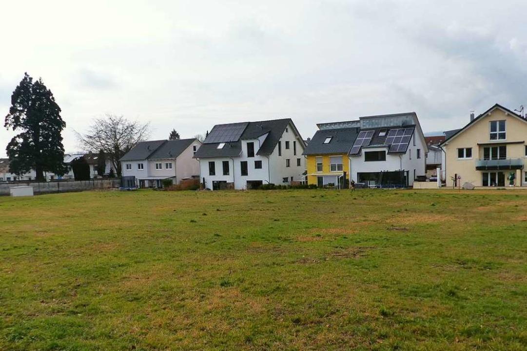 Die Grünfläche beim Neuershauser Bauge...nks und im Hintergrund  Wildobstbäume.  | Foto: Bachmann-Goronzy