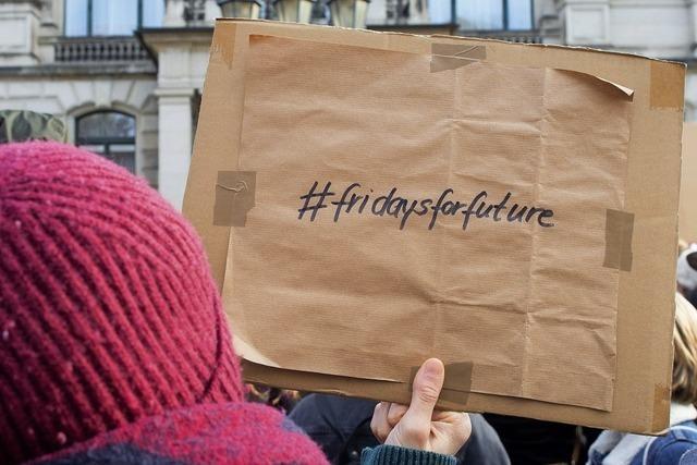 Auch Lahrer Schülerinnen und Schüler streiken für besseres Klima