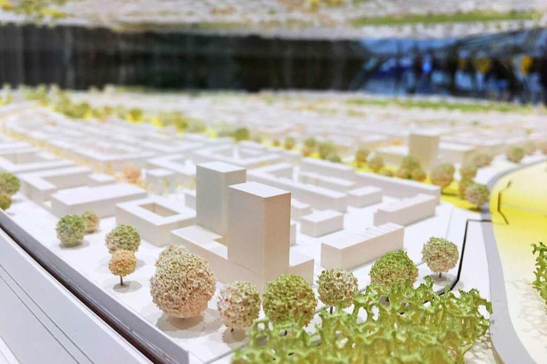 Ein Modell des möglichen Stadtteils im Neuen Rathaus im Stühlinger.  | Foto: Carolin Buchheim
