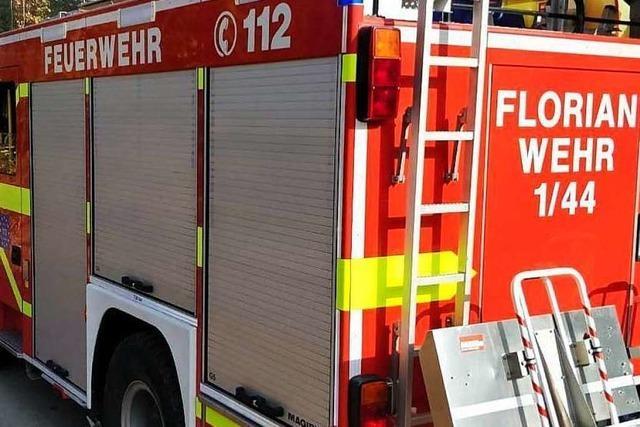 Ragout löst Feuerwehreinsatz aus