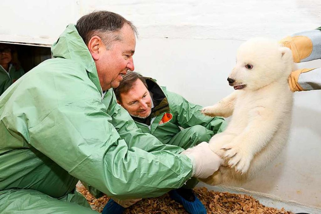Kuschelig und süß: das Eisbärenmädchen  | Foto: AFP