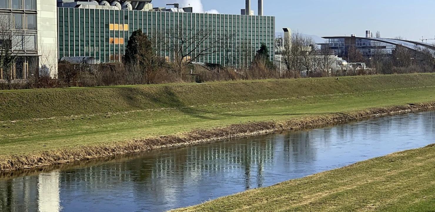 Die Kinzig soll vom Industriekanal zum lebendigen Fluss werden.   | Foto: hsl