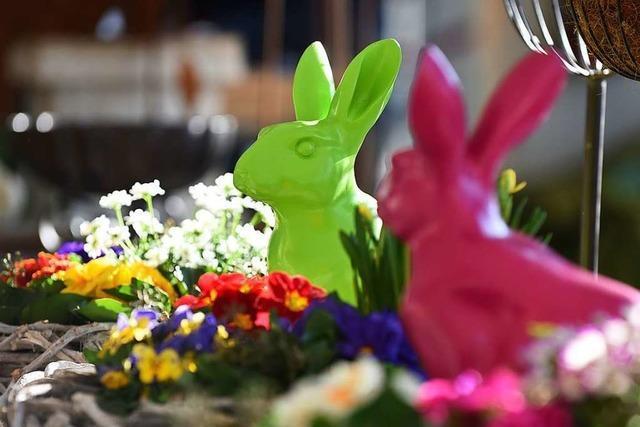Die Gartenträume-Messe findet an diesem Wochenende in Freiburg statt