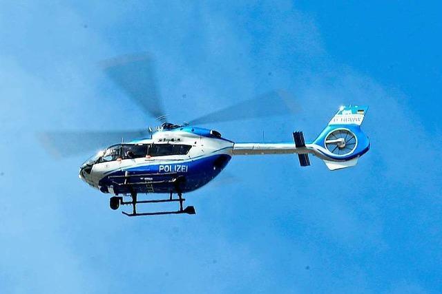 Kuh kann Metzger entkommen – Polizei setzt Hubschrauber bei Verfolgung ein