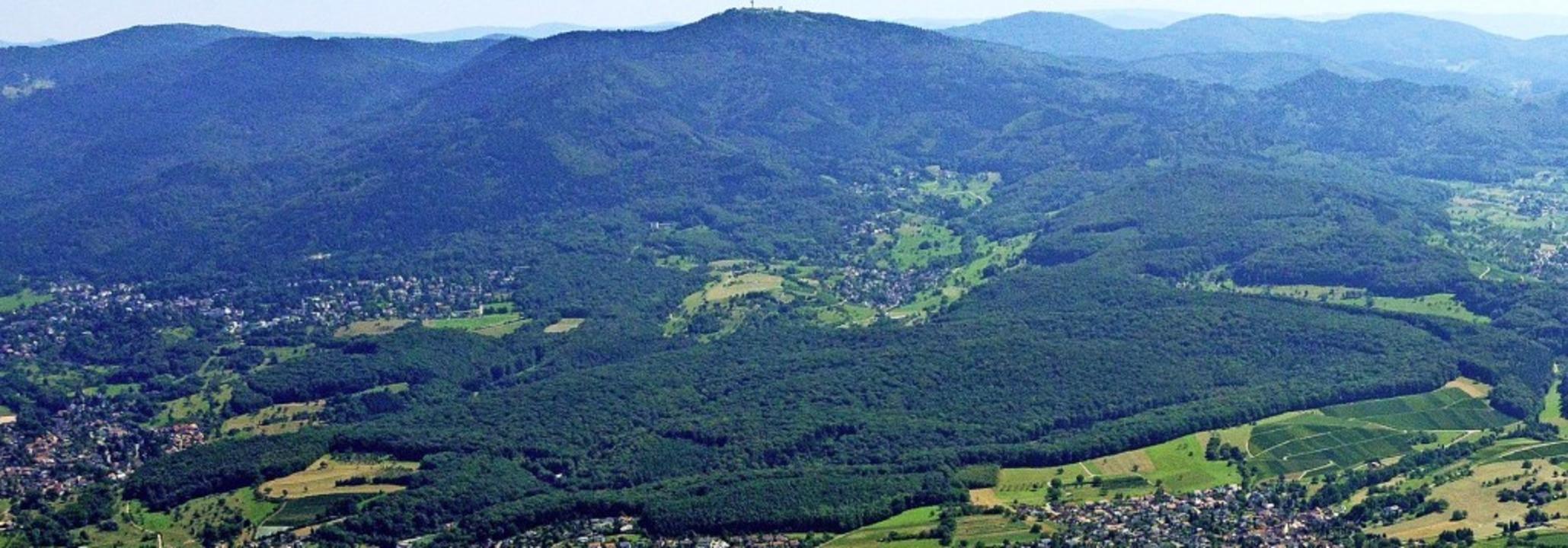 Der Müllheimer Eichwald wird die Stadt...chriften für seinen Erhalt gesammelt.   | Foto:  Stadt Müllheim