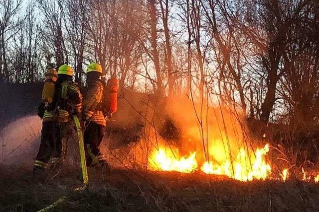 Emmendinger Feuerwehr löscht Brand auf einer Wiese