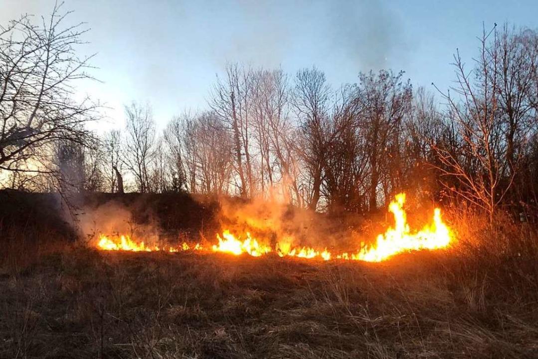 Die Emmendinger Feuerwehr war mit 16 Einsatzkräften vor Ort  | Foto: Feuerwehr Emmendingen