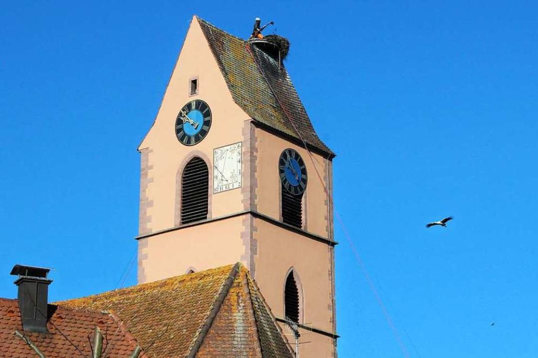 Neugierig umkreisten die Störche den Kirchturm während des Arbeitseinsatzes.  | Foto: Victoria Langelott