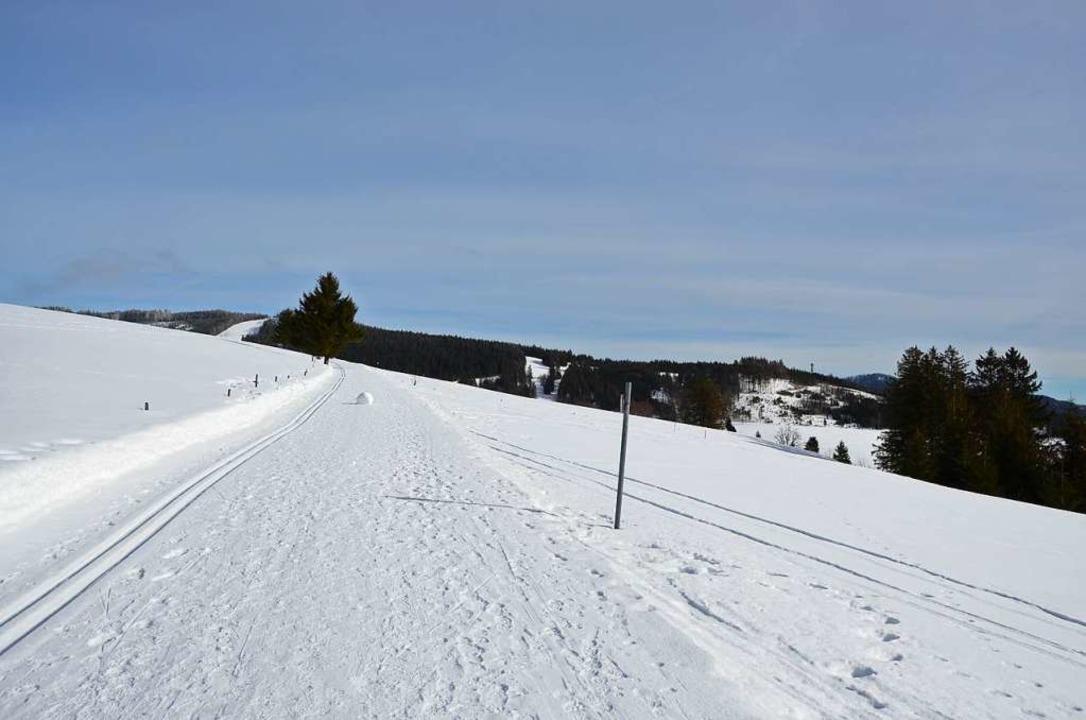 Noch unberührt: Winterlandschaft am Radschert, oberhalb von Todtnauberg   | Foto: hupka (3)/sattelberger