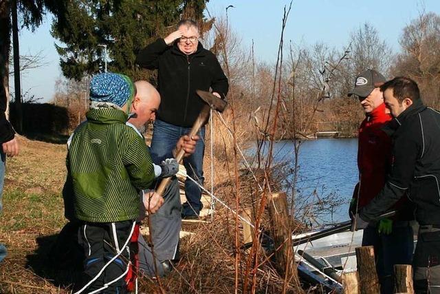 Angler sicherten das Ufer in Ottenheim mit Faschinen