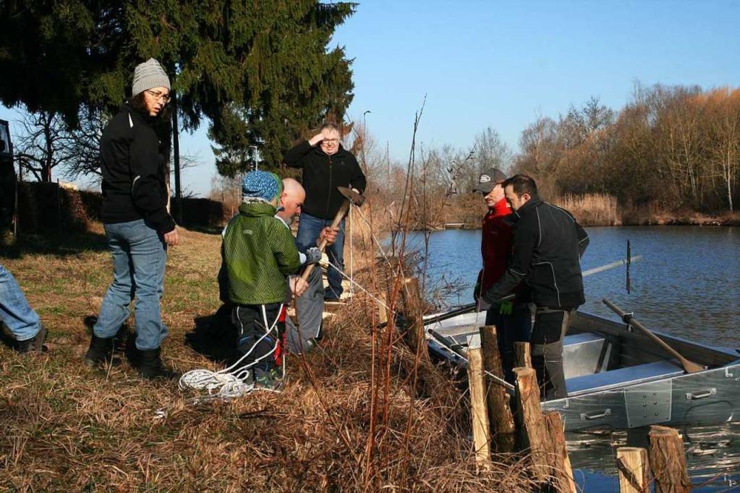 Spaltpfähle werden in den Uferbereich ...Sie sorgen für den Halt der Faschinen.    Foto: martin frenk