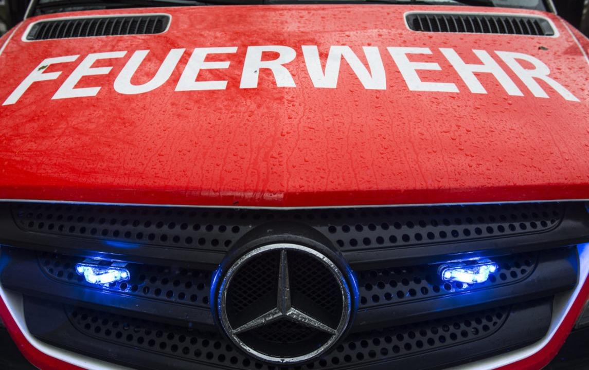Die Feuerwehr in Emmendingen musste am...eren Einsätzen ausrücken (Symbolbild).  | Foto: dpa