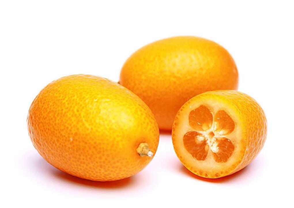 Kumquat.    Foto: fotolia