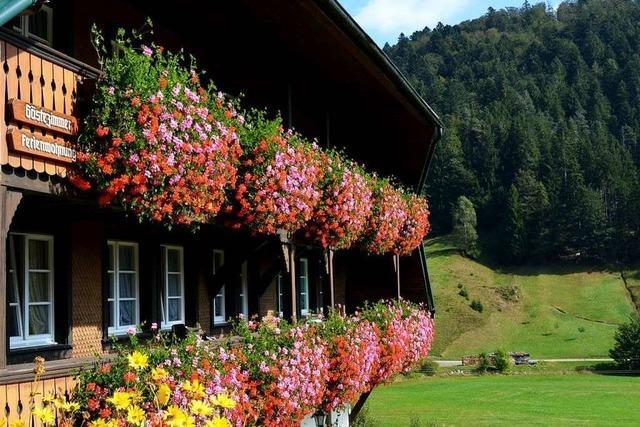 Projekt Dorfurlaub soll Urlauber nach Rickenbach und Herrischried locken