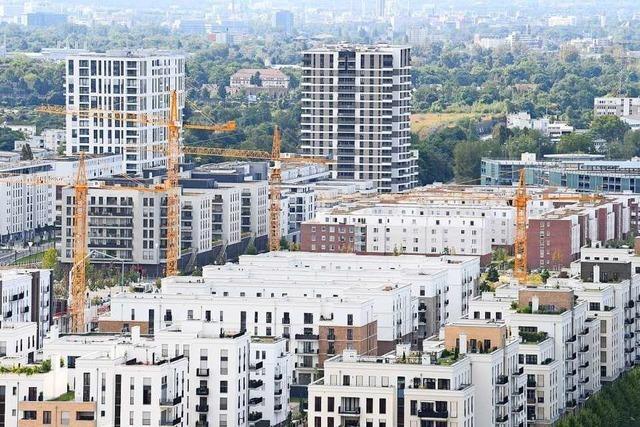Immobilienwirtschaft kritisiert staatliche Programme wie das Baukindergeld