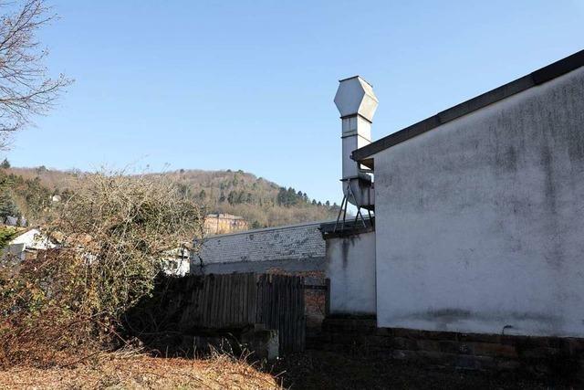Wohnbebauung neben der Zentrifugenbaufirma in Lahr ist möglich