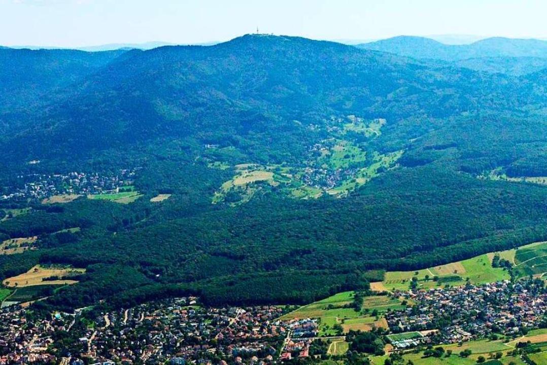 Wird die Rolle des Eichwalds als Naher...seit Wochen die Meinungen auseinander.  | Foto: Stadt Müllheim