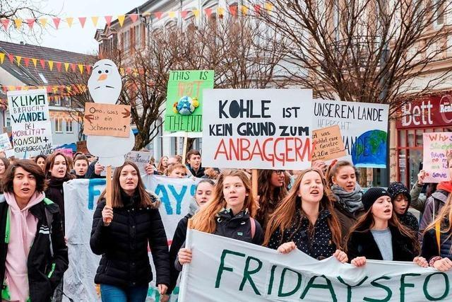 600 Schüler aus dem Landkreis streiken in Lörrach für mehr Klimaschutz