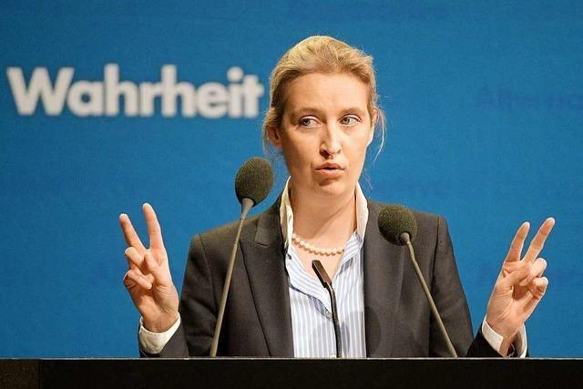 Konservativ oder radikal? Südwest-AfD ringt bei Landesparteitag um Kurs