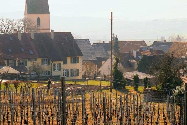In Tannenkirch gibt es ein großes Interesse am neuen Baugebiet