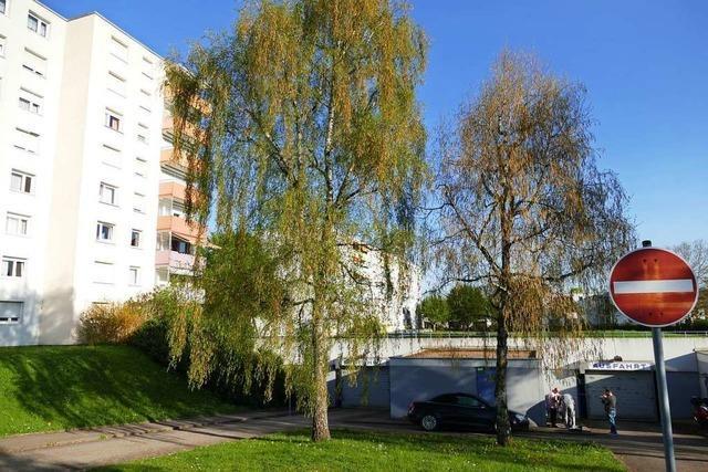 200 neue Wohnungen für das Quartier an der Rheinfelder Römerstraße