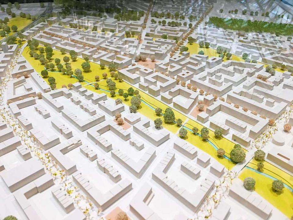 So könnte der neue Stadtteil einmal aussehen.  | Foto: Carolin Buchheim