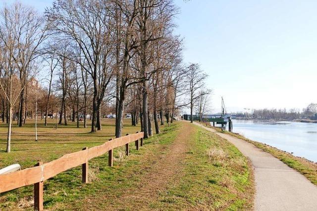 Breisach plant ein 20 Hektar großes neues Quartier entlang des Rheinufers