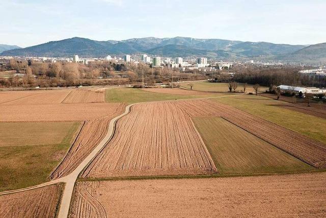 Freiburg nach der Abstimmung: Was bedeutet der Dietenbach-Entscheid?