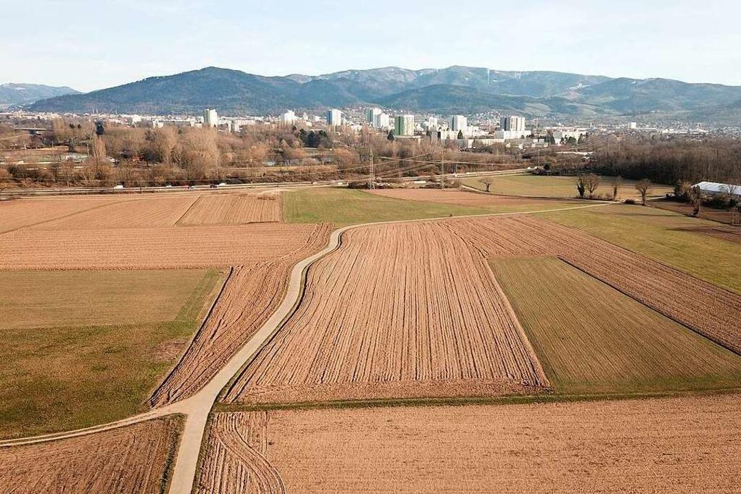 Blick über das Dietenbachgelände: Hier...gerinnen und Freiburger gebaut werden.  | Foto: Michael Saurer