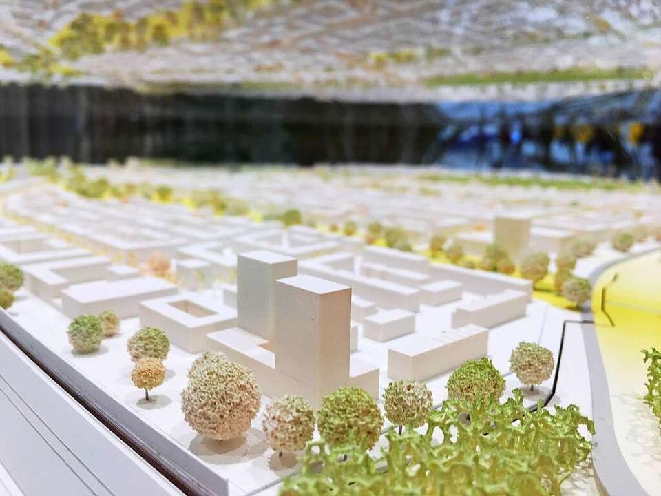 Das Modell des neuen Stadtteils im neuen Rathaus im Stühlinger.  | Foto: Carolin Buchheim