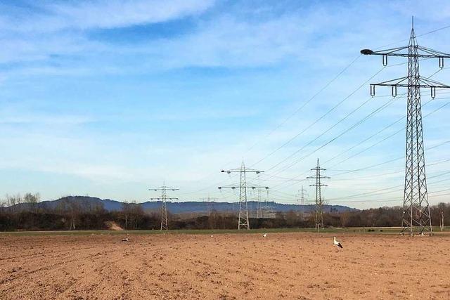 Lärmschutzwall für Holzhausen soll aus Erde vom Elztal-Tunnel entstehen