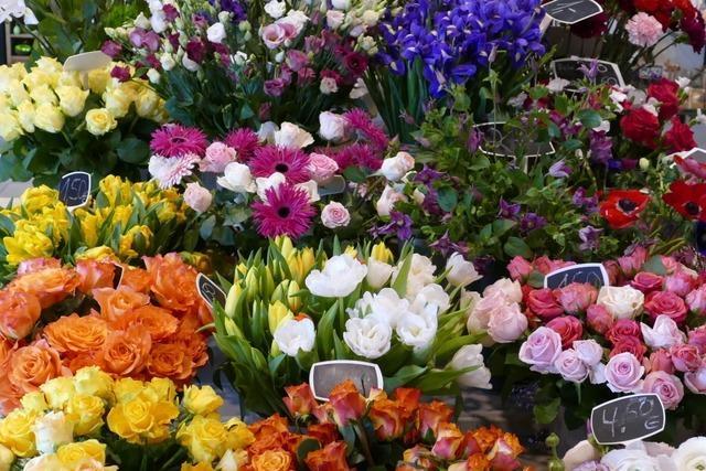 Vom Kränzebinden bis zur Botanik – ein Besuch im Blumenfachgeschäft