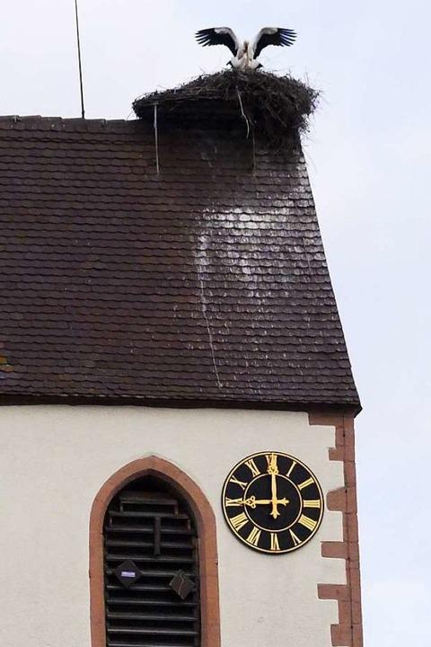 Frühlingsgefühle auf dem Fischinger Kirchturm  | Foto: Victoria Langelott