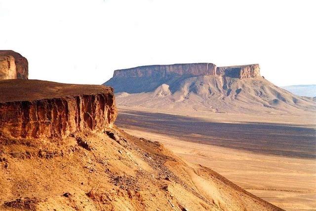 Neue Technik soll die Wüste zur Rohstoffquelle machen