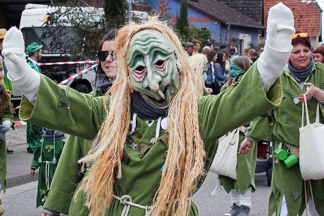 Rekordverdächtiger Fasnachtszug zum Jubiläum der Rheingeister in Hartheim