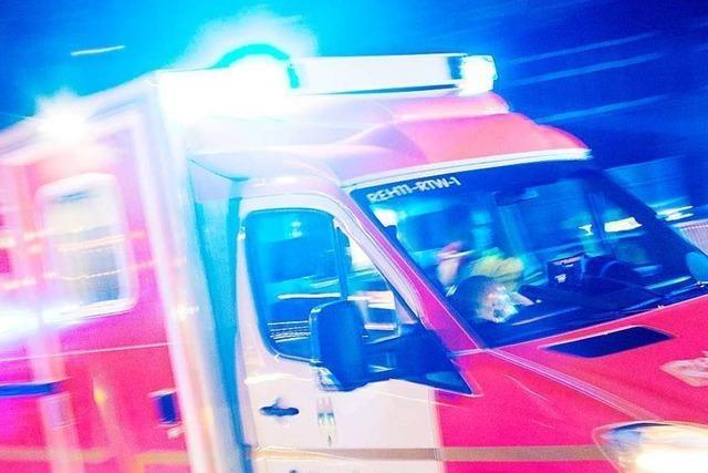 Mann stirbt bei Fasnachtsumzug in Liesberg im Kanton Baselland