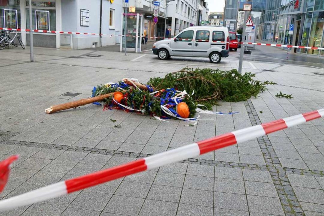 Der Narrenbaum in Rheinfelden steht nicht mehr.  | Foto: Ingrid Böhm-Jacob