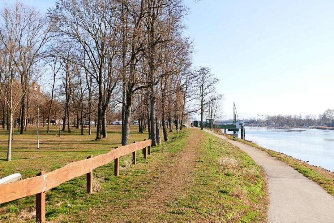 Auch dieser Abschnitt des Rheinufers k...zum neuen Breisacher Quartier gehören.  | Foto: Gerold Zink