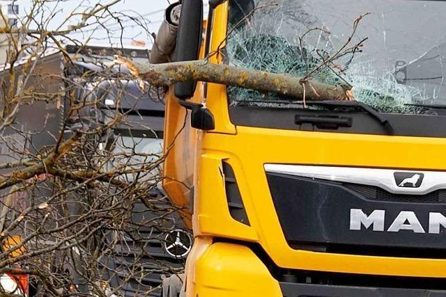 Sturmtief zieht durchs Land – viele Bäume umgestürzt