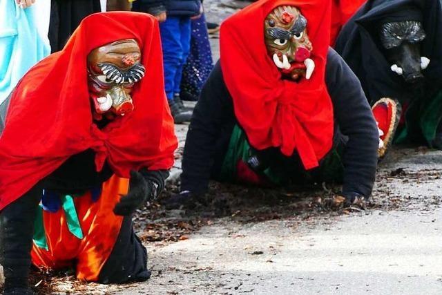 Fotos: Der Neustädter Fasnetmendigumzug