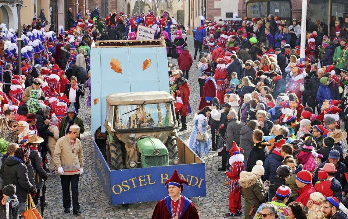 Umzug in Endingen: Hunderte von Zuscha...r mit ihren Gruppen und Wagen prägten.  | Foto: Ruth Seitz