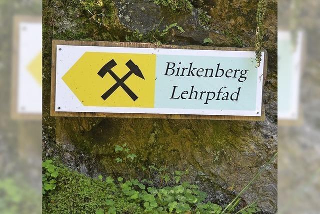 Eine lehrreiche Wanderung in die Geologie- und Archäologiegeschichte des Südschwarzwalds. Geführter Rundgang auf dem Bergbaulehrpfad in Bollschweil-St. Ulrich