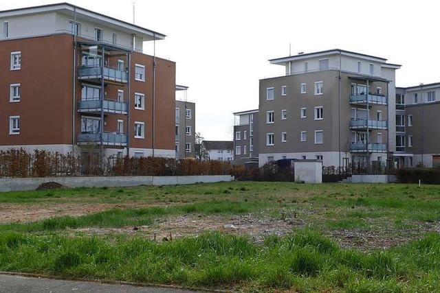 Genossenschaft baut Mietwohnungen an der Colmarer Straße