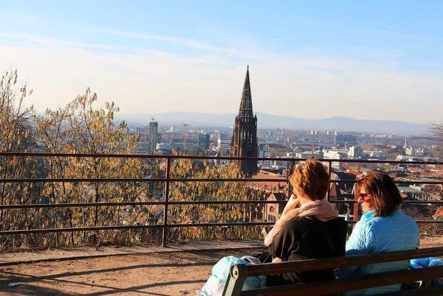 Der Februar brachte in Freiburg sehr viel Sonne und viel zu wenig Regen