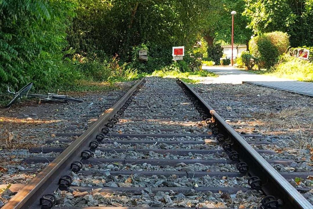In  Breisach endet das Gleis Richtung Westen. Wird es bald weitergeführt?  | Foto: Sebastian Wolfrum