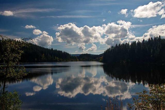 In diesen Seen kann man im Landkreis Breisgau-Hochschwarzwald sorgenfrei baden