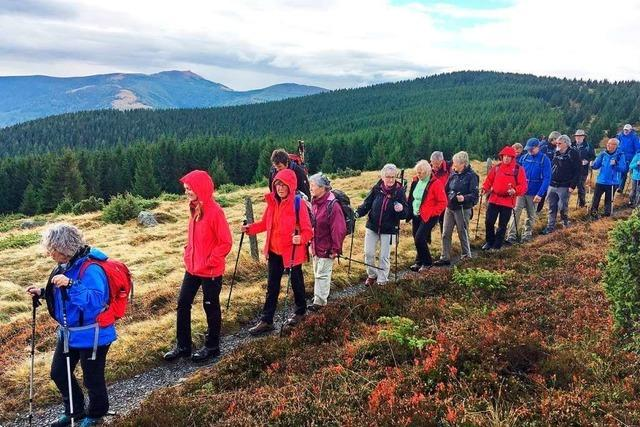 Der Schwarzwaldverein Dreisamtal-Kirchzarten wird 60 – und sucht neue Mitglieder