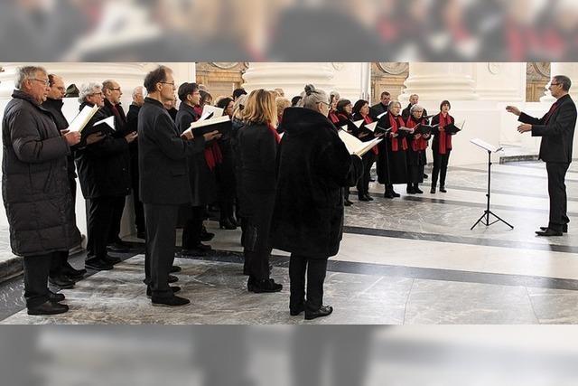 Domchor St. Blasien feiert Jubiläum