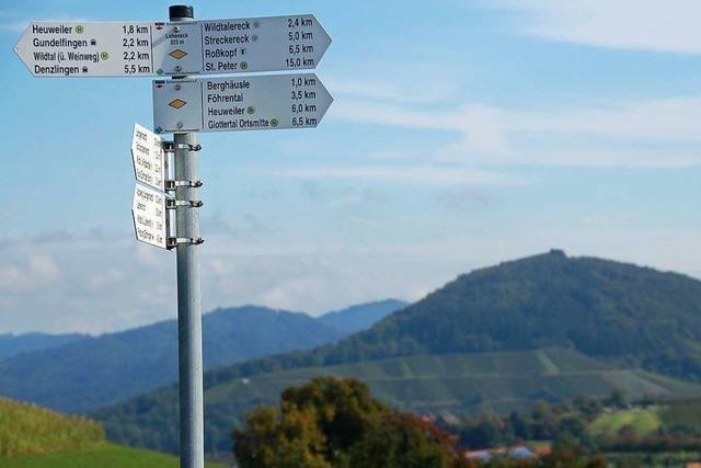 Wie der Schwarzwaldverein Gundelfingen den Wandersport attraktiv halten will