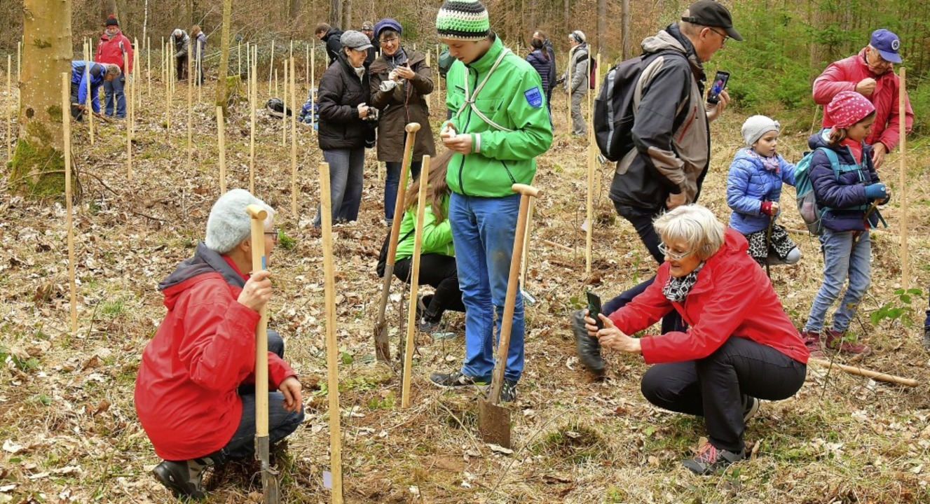 Baumpflanzaktion der Stadtwerke Emmendingen  | Foto: Dieter Erggelet